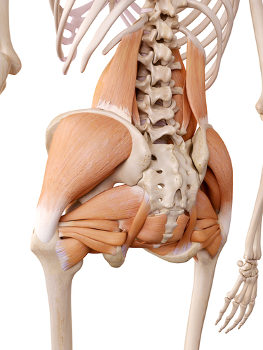 Lower Back And Hip Pain How Are They Connected