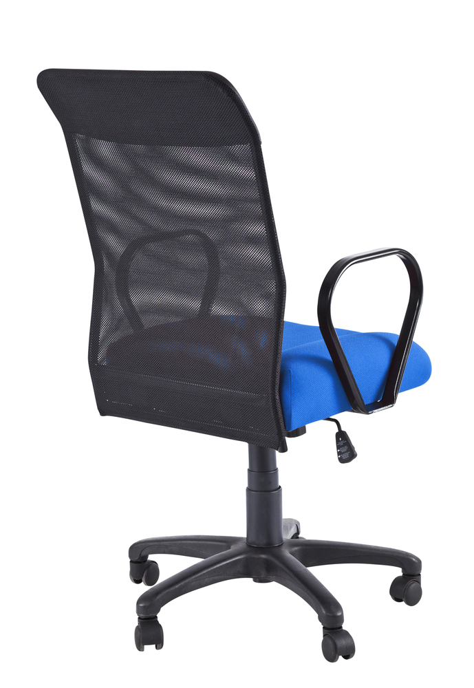 Lumbar Support for fice Chairs