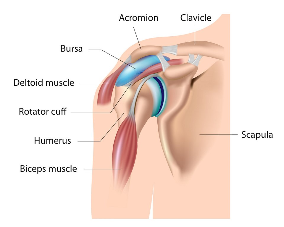 Bursitis in Shoulder
