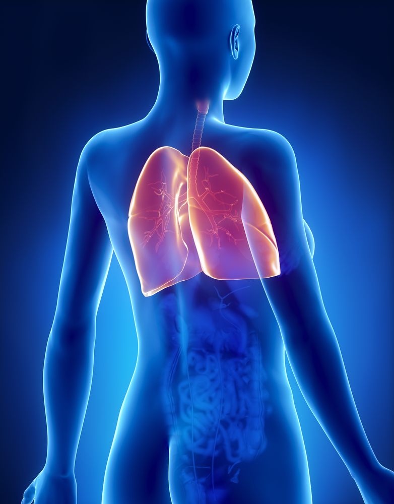 Back And Chest Pain Including Lung Pain Connections