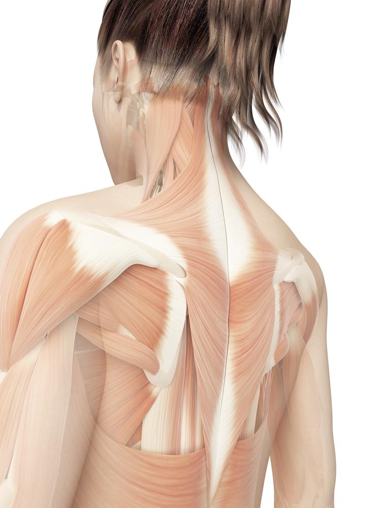Chronic Upper Back Pain